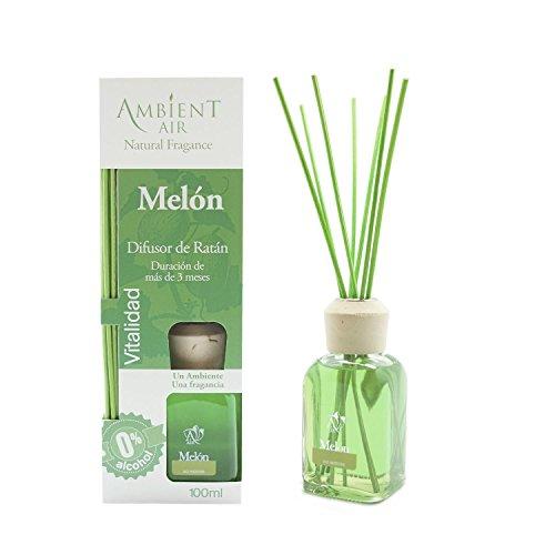Ambientair Mikado Ambientador para Hogar, Aroma Melón, Cristal, Verde, 8 x 8 x 24 cm