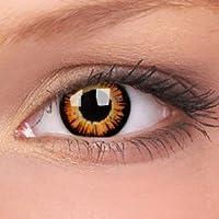 """2 Farbige Halloween Kontaktlinsen""""Twilight"""" - 2x Crazy Bella Kontaktlinsen ohne Stärke + gratis Kontaktlinsenbehälter - für Halloween, Fasching, Karneval"""