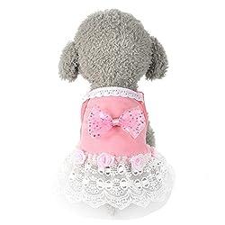 Xshuai Fashion Cute Pet Puppy Dog Bow Tutu Dress Lace Skirt Princess Costume Apparel Clothes
