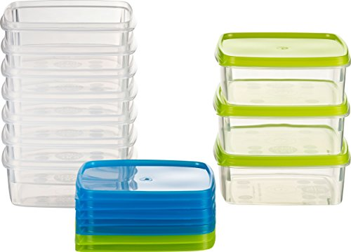 Kigima Frischhaltedose Gefrierbehälter 0,3l quadratisch 11x11x4,4 cm 10er Set blau und grün