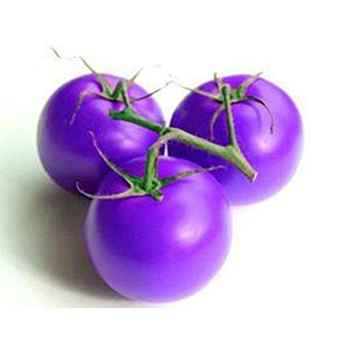 Doubleer 20 Pcs Violet Tomate Graines Cerises Tomates Balcon Bonsaï Fruits Biologiques Cerise Jardin Graines