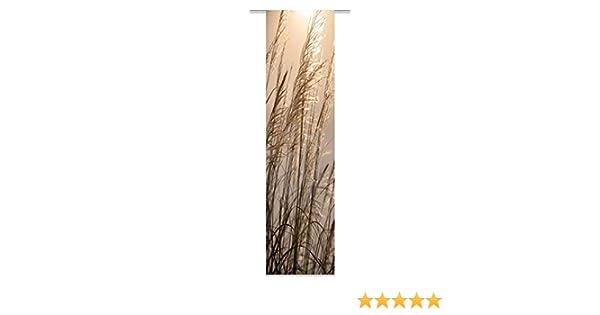 6d78c0a4b0301e Amazon.de: wohnfuehlidee Schiebevorhang Deko Blickdicht Susanna Größe BxH  60x245 cm, Natur