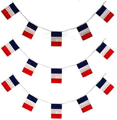 33FT FRENCH FLAG 20 FLAGS 10 METERS BUNTING PARTY DECORATION ALL WEATHER BUNTING BASTILLE DAY FRANCE EVENT
