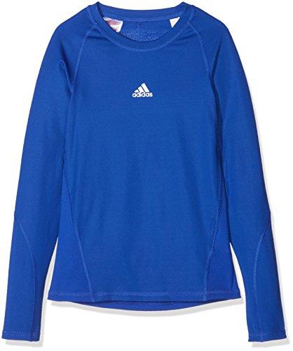 adidas Kinder Alphaskin Longsleeve Funktions Shirt, Bold Blue, 152