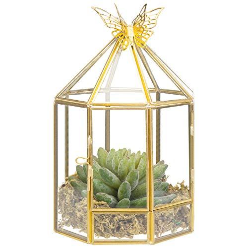 MyGift Pflanzenterrarium mit sechseckigem Vogelkäfig-Design, aus Glas, Metallrahmen, Seitentür und Schmetterlingsakzent -