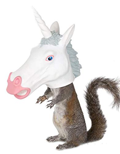Unicorn Squirrel Feeder