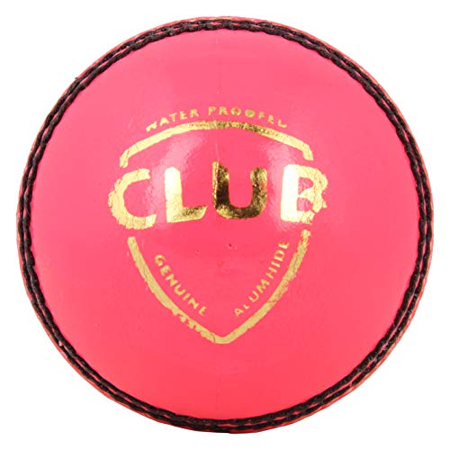 SG Leather Cricket Ball (Pink)