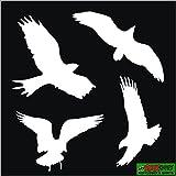 Frühlingsaktion: 4 Vögel Deko Aufkleber, Vogel, Wandtattoo, Wintergarten, Vogelschutz, Warnvögel, Vogelschlag, Warnvögel, Schutz vor Glassbruch, Vogelflug, Fensterschutz für Fenster, Auto, in weiss,Warnvögel, blitzschneller Versand aus Deutschland,Bird Sticker Window Vinyl Glastür