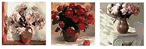 Wowdecor kit dipingere con i numeri per adulti bambini Junior principianti per anziani, pittura numerata, set di 3pezzi, colore: Rosa & rosso rose Flowers 16x 20x P cm Frameless