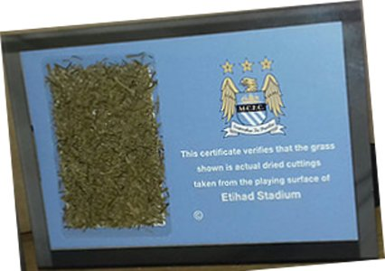Manchester City Herbe Coupée Etihad Stadium