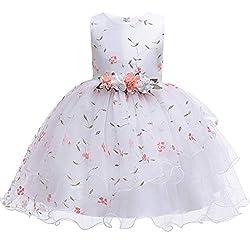 Yanhoo Kinder Mädchen Kleid Ärmellos Prinzessin Hochzeit Blumenmädchen Kleider Bestickt Tüll Blume Prinzessin Brautjungfer Geburtstag Party Kleid Festzug Pageant Kleid