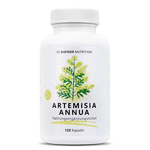 Artemisia Annua 120 Kapseln im 4 Monatsvorrat - Einführungspreis - Hochdosiertes Naturprodukt mit 450 mg Beifußkraut Extrakt 30:1 - Artemisinin - vegan - hergestellt in Deutschland -