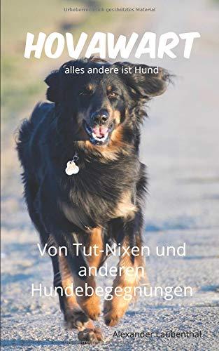 Hovawart - alles andere ist Hund: Von Tut-Nixen und anderen Hundebegegnungen