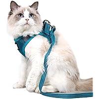 Dotoner Juego de arnés y Correa para Gato Ultraligero Suave y cómodo Chaqueta para Caminar para Gatos Acolchada a Prueba de Escapes Apto para Cachorros Conejo(turq,m)