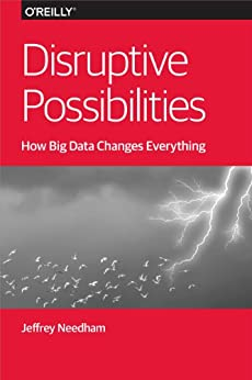 Disruptive Possibilities: How Big Data Changes Everything by [Needham, Jeffrey]