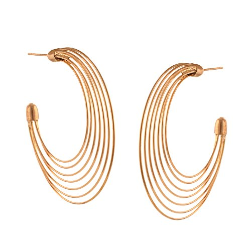 Zephyrr Jewellery Pierced Designer Hoop Earrings for Women