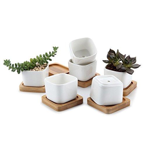t4u-conjunto-de-6-cuadrado-mini-blanco-cermicos-planta-maceta-suculento-cactus-planta-maceta-planta-