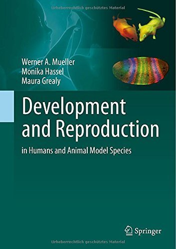 Development and Reproduction in Humans and Animal Model Species by M¨¹ller, Werner, Hassel, Monika, Grealy, Maura (2015) Gebundene Ausgabe