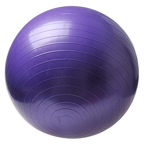 Sports Yoga Balls Bola Pilates Fitness Gym Balance Exercise Massage Ball Purple