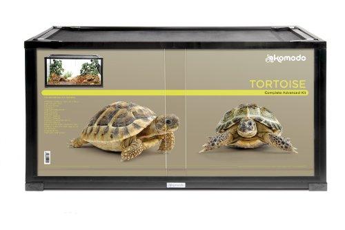 Kit Terrario Tortuga Terrestre