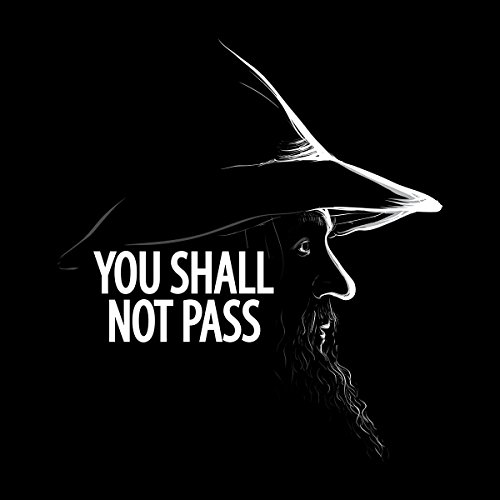 You Shall Not Pass Gandalf Lord Of The Rings Men's Vest Black