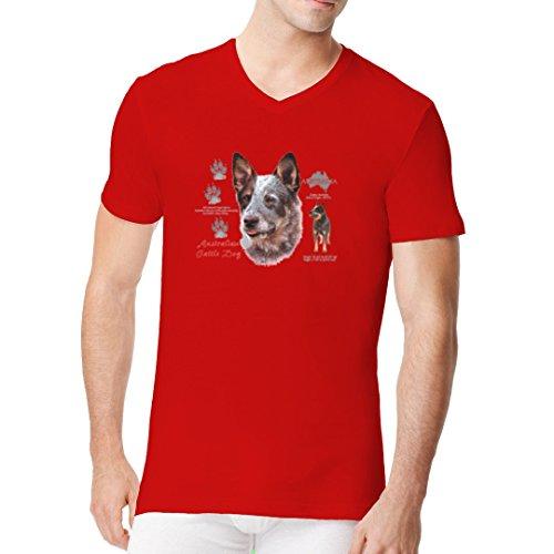 Im-Shirt - T-Shirt: Australian Cattle Dog, Heeler, Treibhund cooles Fun Men V-Neck - verschiedene Farben Rot