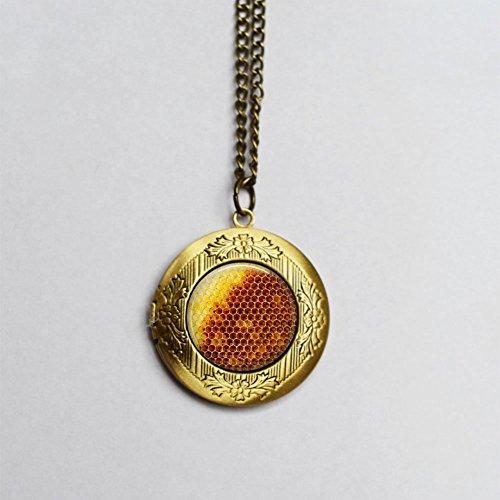 Collar con colgante de panal de abeja - Historia natural - regalo para amante de la naturaleza - miel