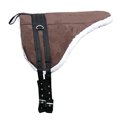 AMKA Shetty Pony Reitkissen mit Sattelgurt | Bareback Pad | Pony Reitkissen | Pad baumlos auch für Holzpferde