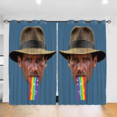 HONGYANW - Tende oscuranti Personalizzate, per finestre di Indiana Jones Puking Rainbow Snapchat, con Occhielli, per Camera da Letto e Soggiorno, 132 x 183 cm, 2 Pannelli