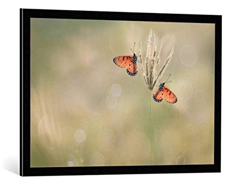 cuadro-con-marco-edy-pamungkas-saat-indah-bersamamu-impresion-artistica-decorativa-con-marco-de-alta