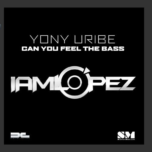 Can You Feel The Bass