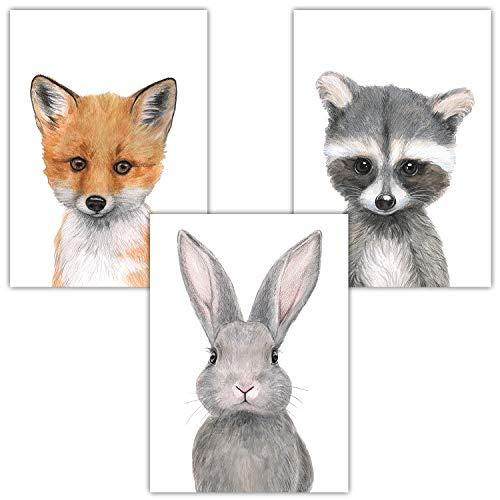 Frechdax® 3er-Set Bilder Kinderzimmer Deko Junge Mädchen - DIN A4 Poster Tiere - Wandbilder - Porträt | Waldtiere Safari Afrika Tiere Porträt (3er Set Hase, Fuchs, Waschbär)