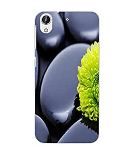 HTC DESIRE 626 GPLUS FLOWER Back Cover by PRINTSWAG