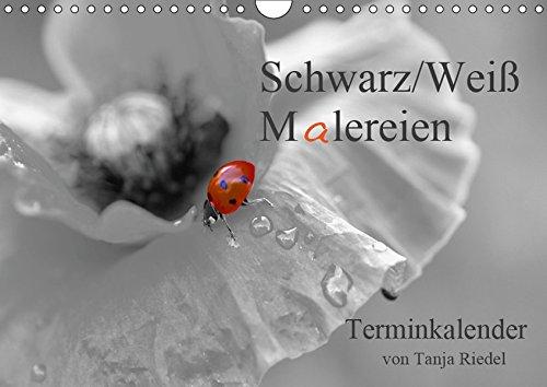 Schwarz-Weiß Malereien Terminkalender von Tanja Riedel (Wandkalender 2019 DIN A4 quer): Tolle Schwarz-Weiß Fotografien mit einem kleinen Farbtupfer ... 14 Seiten ) (CALVENDO Lifestyle)