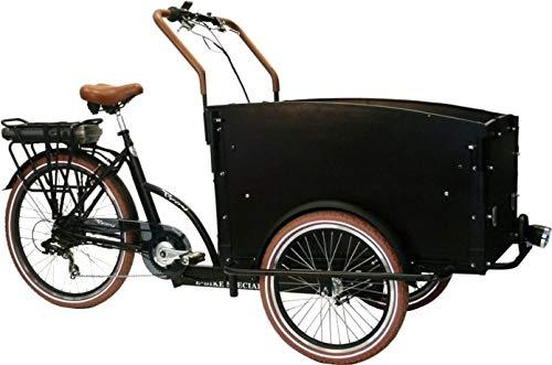 Bakfiets Troy elektrisches Dreirad
