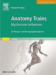 Anatomy Trains: Myofasziale Leitbahnen (für Manual- und Bewegungstherapeuten)