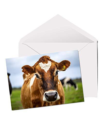 Geburtstagskarte für Kinder, Kuhmotiv, A5, blanko, Motiv: Kuh, Bauernhof, Nr. 2100 - Kuh Grußkarten