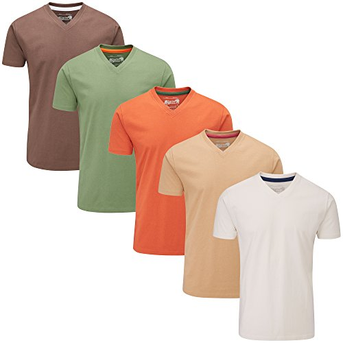 Charles Wilson 5er Packung Einfarbige T-Shirts mit V-Ausschnitt (X-Large, Mixed Earth) (T-shirt X-large)