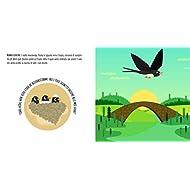 La-storia-di-una-rondine-Montessori-un-mondo-di-conquiste-Ediz-a-colori