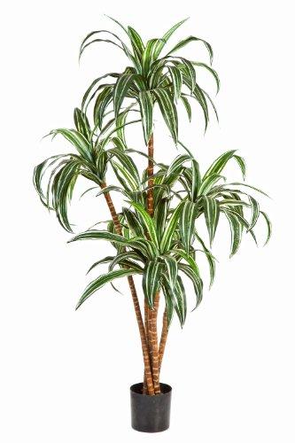 artplants – Deko Dracaena JALA, 5-stämmig, weiß-grün, 120 cm – naturgetreue Kunstpalme/Dracaena künstlich