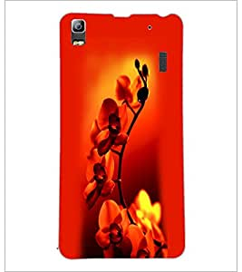 PrintDhaba Beautiful Flowers D-1182 Back Case Cover for LENOVO A7000 PLUS (Multi-Coloured)