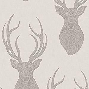 Rasch Portfolio Wallpaper -