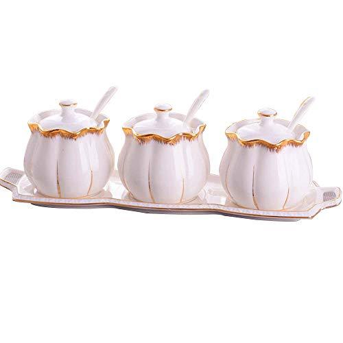 Cwllwc wly barattoli portaspezie, struttura in ceramica condimento contenitore di cucina con piatto in porcellana tre pezzi set