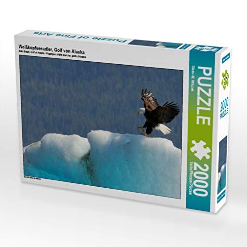 CALVENDO Puzzle Weißkopfseeadler, Golf von Alaska 2000 Teile Lege-Größe 90 x 67 cm Foto-Puzzle Bild von Dieter-M. Wilczek -