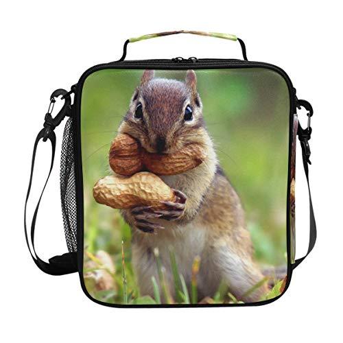 FAJRO Lunch-Tasche, Motiv Eichhörnchen, Eat Erdnüsse, Staring Kamera -