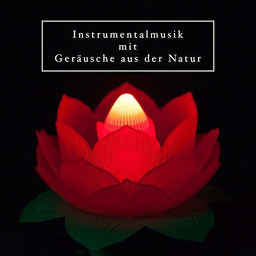 Instrumentalmusik mit Geräusche aus der Natur