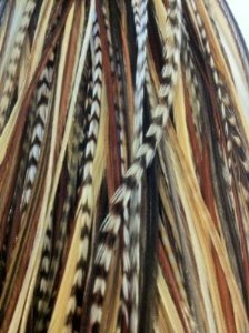 5 Feathers 7-11 Dark Brown,black & Beige Mix Feathers Hair Extension with Amazing Quality Salon Feathers by SEXY SPARKLES