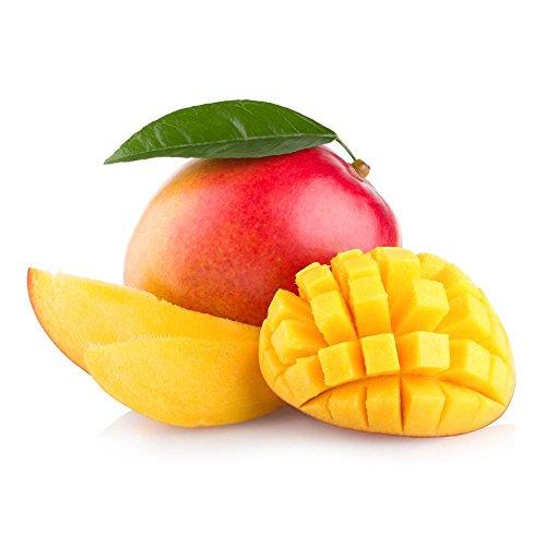 Preisvergleich Produktbild Flug-Mango