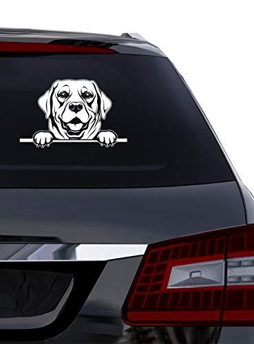 BlingelingShirts Auto Aufkleber Hund Labrador Porträt Hunde weiß matt ca. 25 cm breit auch für Wand Fenster Wandaufkleber Wandaufkleber Laptop Wandtattoo (Auto-fenster-aufkleber Hunde)
