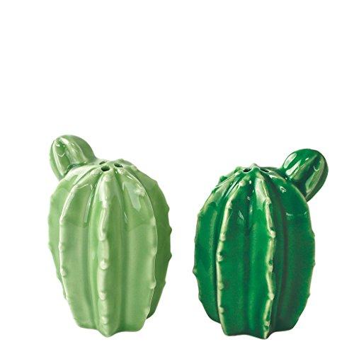 Zeit Concept Tropical Desert Cactus Porzellan Geschirr Set Salt & Pepper Shaker Set Salt Shaker Set